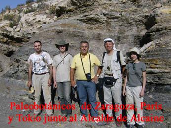 20080830211237-paleobotanicos-en-alcaine-2008.jpg
