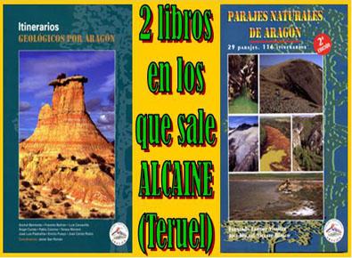 20091209230842-libros-alcaine-teruel-.jpg