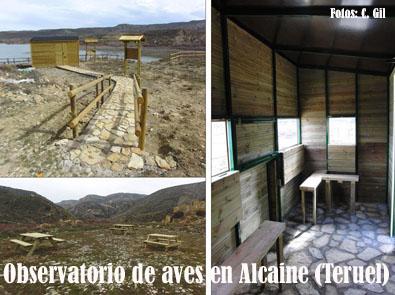 20100515195420-caseta-aves-alcaine.jpg