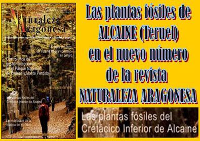 20100724175605-natura-arogensa24.jpg