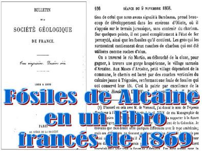 20110107005103-fosil-alcaine-libro-france-1869.jpg