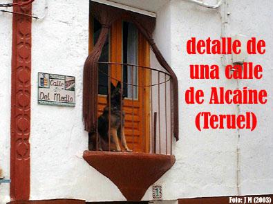 20120505104012-perro-en-balconalcaineabril03-.jpg