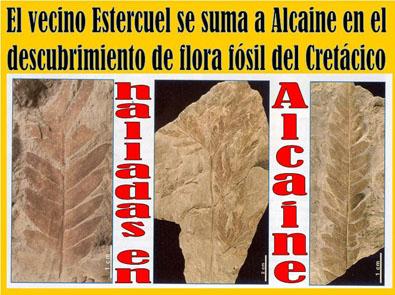 20121128222944-alcaine-estercuel-flora-fosil.jpg