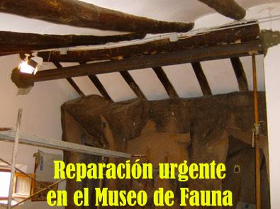 20121203003623-puentemuseofauna.jpg
