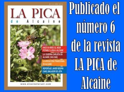 20140727113753-la-pica-6-publicada.jpg