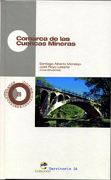 20070415190946-libro-cmineras.jpg