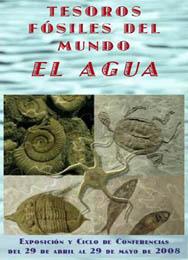 20080427115024-expo-fosiles-sampuz.jpg