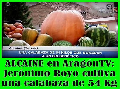 20131024233616-calabaza-alcaine-54kg.jpg