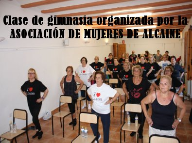 20140817003144-gimnsasia-asoc-mujeres-alcaine-2014.jpg