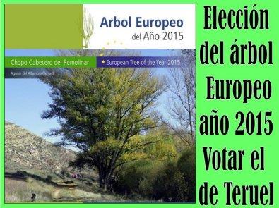 20150214211253-arbol-europeo-2015.jpg