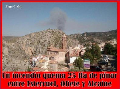 20160629151224-incendio-pinar-la-codonera-alcaine.jpg