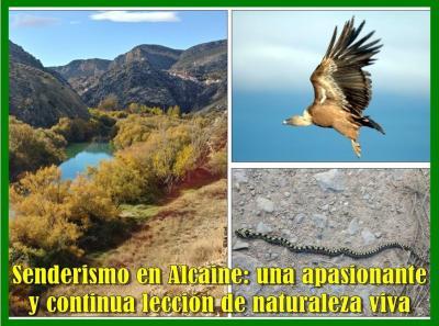 20191208122608-senderismo-y-fauna-alcaine2.jpg