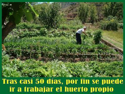 20200502084328-cultivando-huerta-alcaine-2002.jpg