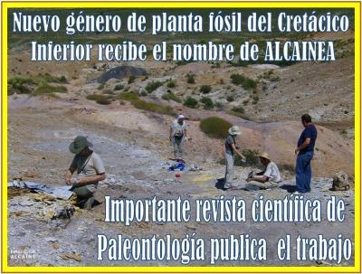 20210303115347-planta-fosil-de-alcaine-da-nombre-a-genero-alcainea.jpg