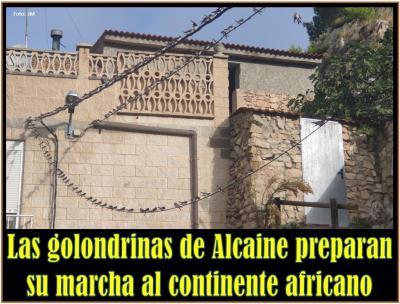 20210906080501-marcha-golondrinas.jpg